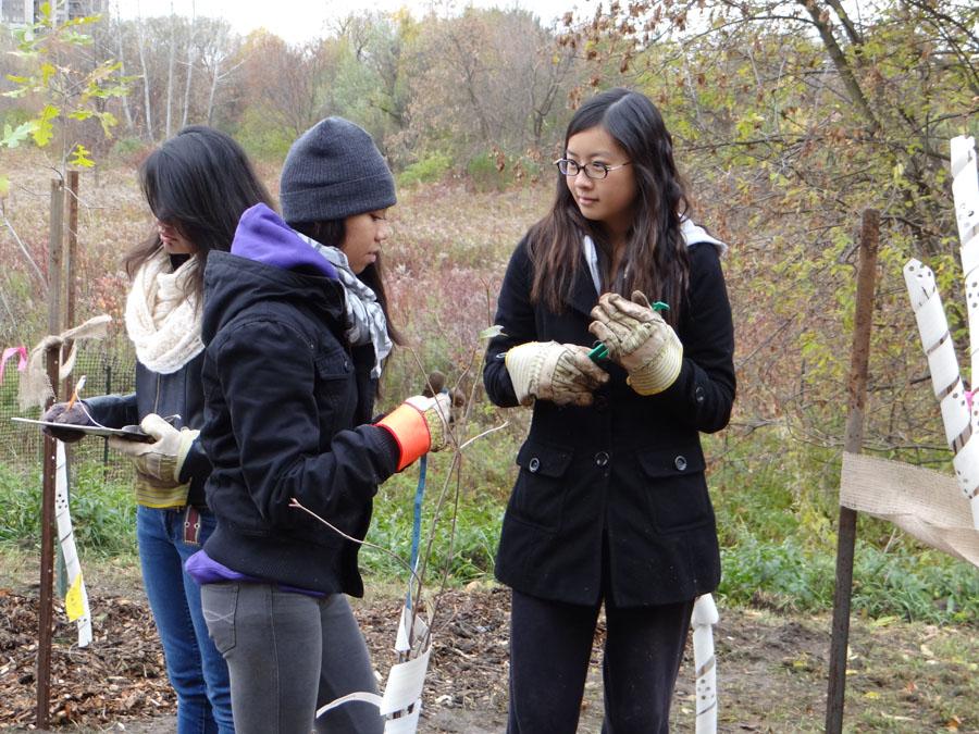P4C Humber Arboretum 2011